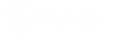 Bad Wolf Ops